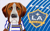 LA Galaxy News Hound