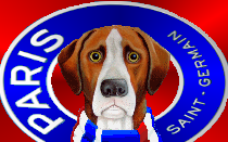 PSG trying to hijack Bruno FERNANDES' move to United